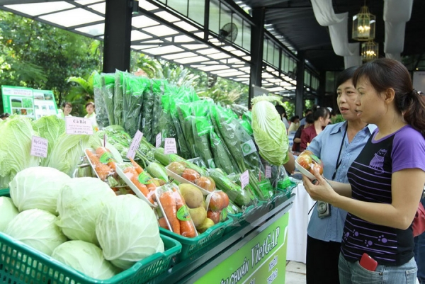 Impacts of green consumption on Vietnamese enterprises