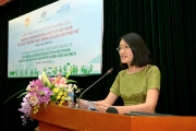 Vietnamese female intellectuals currently in political theory research and teaching