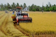 The negative effects of small-scaled farmer mindset on process of new rural areas construction in Vietnam today