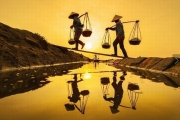 Social security for Vietnamese farmers