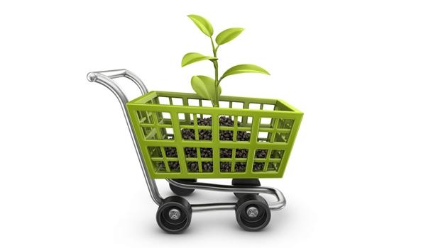 Tác động của xu hướng tiêu dùng xanh đến doanh nghiệp Việt Nam