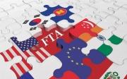 Cơ chế bảo đảm quyền con người trong các Hiệp định thương mại tự do thế hệ mới