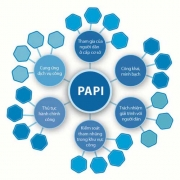 Mối tương quan giữa các chỉ số PAPI và PCI  (từ thực tiễn Thành phố Hồ Chí Minh)