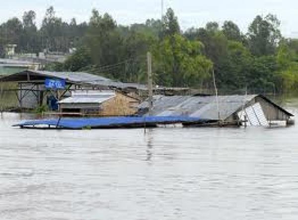 Từ cảnh báo của Ăngghen về thảm họa thiên nhiên nghĩ về vai trò của nhà nước đối với bảo vệ môi trường sinh thái