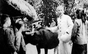 Triết lý Hồ Chí Minh về phát triển Việt Nam