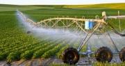 Phát triển nông nghiệp công nghệ cao: Những rào cản và giải pháp khắc phục