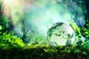 Quan điểm của Hồ Chí Minh về bảo vệ môi trường sinh thái