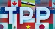 TPP: Thời cơ và thách thức cho Việt Nam