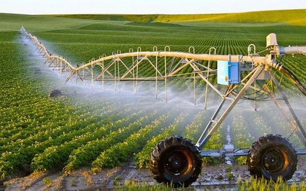 Nghiên cứu, ứng dụng khoa học - công nghệ phục vụ phát triển nông nghiệp hiện đại, bền vững