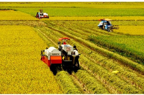 Phát triển công nghiệp phục vụ nông nghiệp ở đồng bằng sông Cửu Long hiện nay