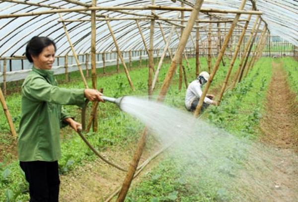 Một số giải pháp nâng cao chất lượng hoạt động chính quyền cấp quận, huyện ở thành phố Hà Nội