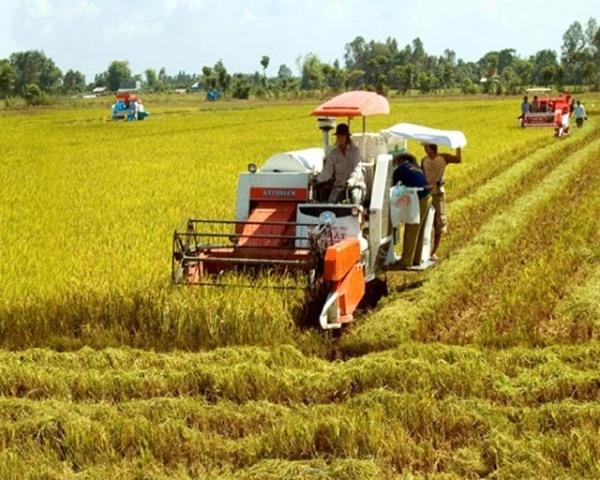 Phát huy vai trò của giai cấp nông dân trong thời kỳ đẩy mạnh công nghiệp hóa, hiện đại hóa đất nước